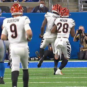 I Guess We See Why the Bengals Didn't Draft an Offensive Tackle